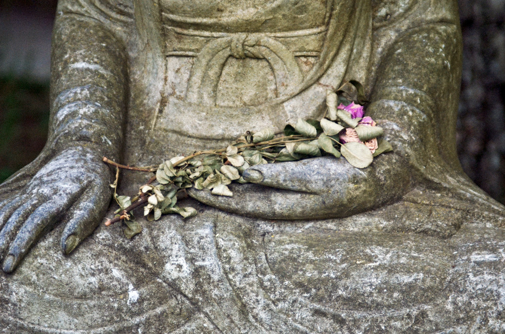 Buddha statue with dying flowers. Photo by Zen Diary, via Flickr Creative Commons